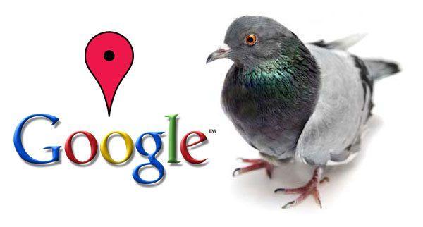 Google-Pigeon-update.jpg